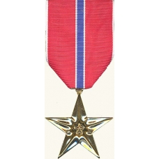 Anodized Bronze Star Medal