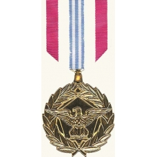 Anodized Defense Meritorious Service Medal