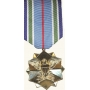 Anodized Joint Service Achievement Medal