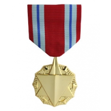 Anodized Combat Readiness Medal