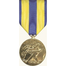 Anodized Navy Expeditionary Medal