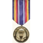 Anodized Global War on Terrorism Service Medal