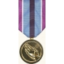 Anodized Humanitarian Service Medal