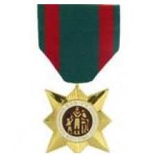 Anodized Vietnam Civil Actions Medal