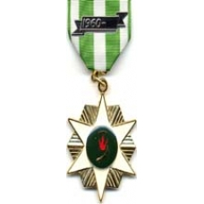 Anodized Vietnam Campaign Medal