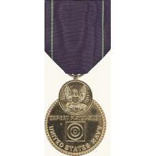 Anodized Navy Pistol Expert Medal