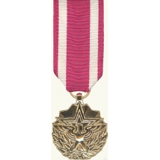 Anodized Mini Meritorious Service Medal