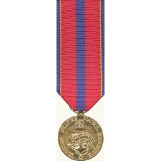 Anodized Mini Navy Reserve Meritorious Service Achievement Medal