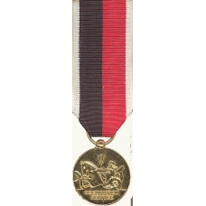 Anodized Mini Navy Occupation Medal