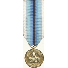 Anodized Mini Coast Guard Arctic Service Medal