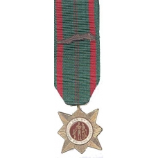 Anodized Mini Vietnam Civil Actions Medal