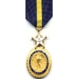 Large Navy Distinguished Service Medal