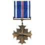 Large Distinguished Flying Cross