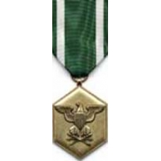 Large Navy/Marine Commendation Medal