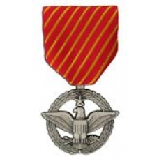 Large Air Forces Combat Action Medal