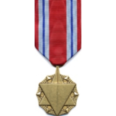 Large Combat Readiness Medal