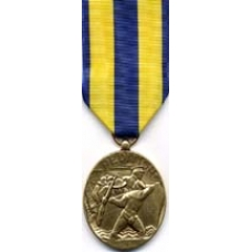 Large Navy Expeditionary Medal