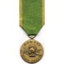 Large Women Army Corps Service. Medal