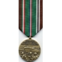 Large Eur-African-Mid Eastern Campaign Medal