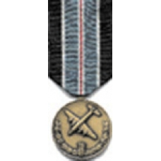 Large Medal for Humane Action Medal
