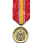 Large National Defense Service Medal