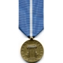 Large Korean Service Medal