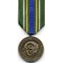 Large Korean Defense Service Medal