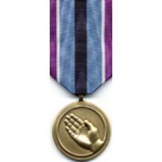 Large Humanitarian Service Medal