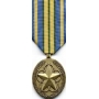 Large Outstanding Volunteer Service Medal