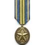 Large Outstanding Volunteer Service Medal
