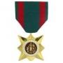 Large Vietnam Civil Actions Medal