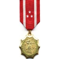 Large Philippine Defense Medal