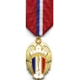 Large Philippine Liberation Medal