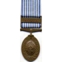 Large United Nations Service Medal (Korea)Medal