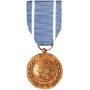 Large United Nations Medal