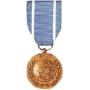Large United Nations Medal