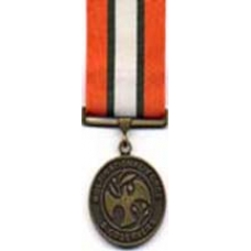 Large Multinational Force/Observer Medal