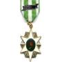 Large Vietnam Campaign Medal