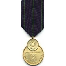 Large Navy Rifle Expert Medal