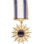 Mini Air Forces Distinguished Service Medal