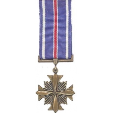 Mini Distinguished Flying Cross