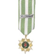 Mini Vietnam Campaign Medal