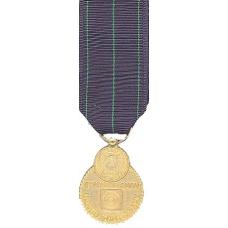 Mini Navy Rifle Expert Medal
