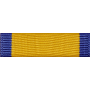 Medal of Efficiency Ribbon